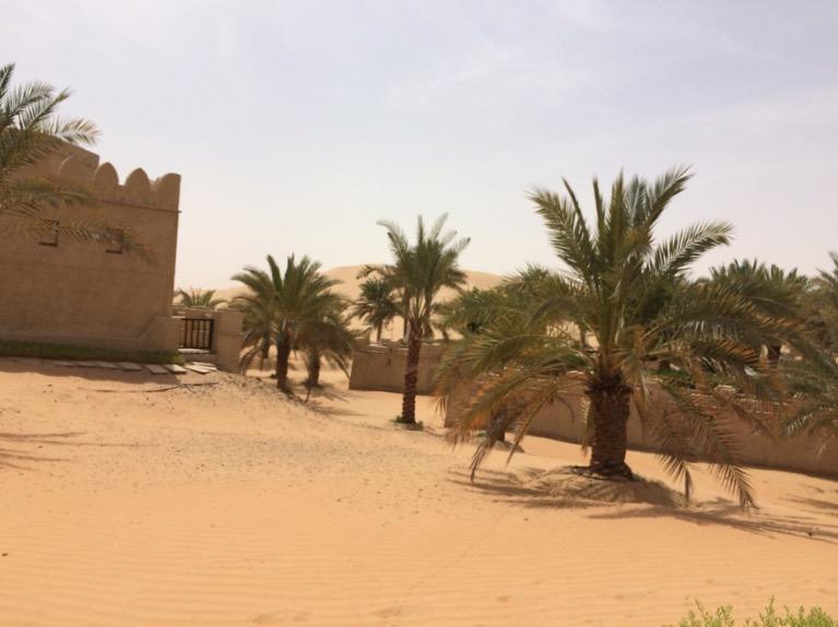 Traumhafte Wüstenoasen