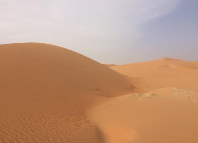 Traumhafte Wüstenfotos